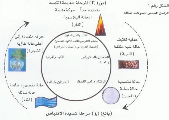مراحل التحولات الخمسة